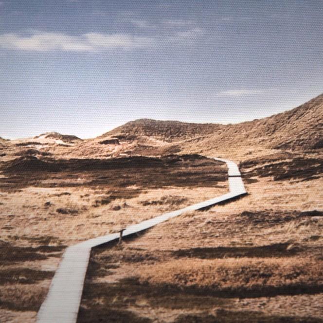 Duenenweg-Leinwandbild-beige-Dunkelbeige-50x70-lup2