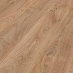 Panama Oak