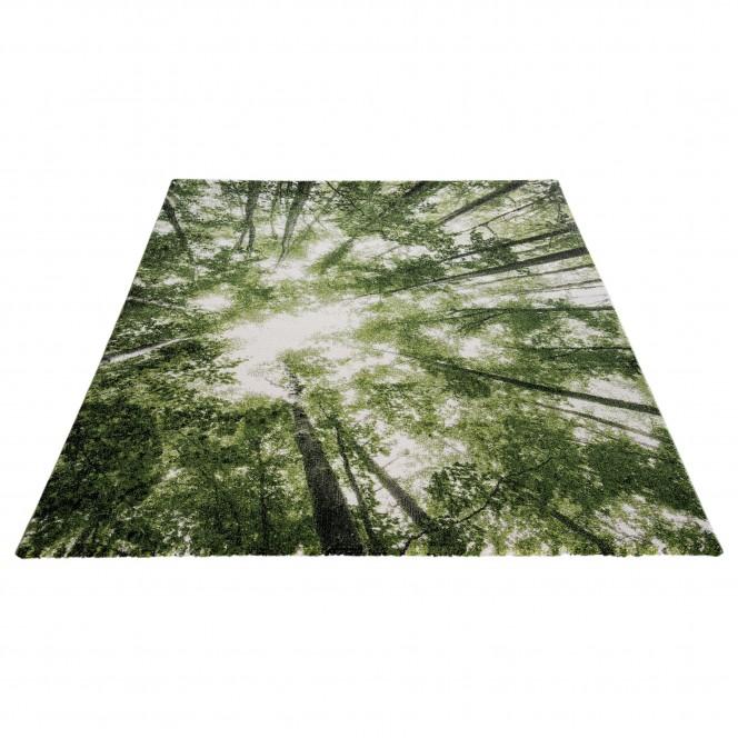 GreenSky-DesignerTeppich-Gruen-160x230-per.jpg