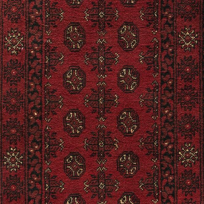 AfghanSalor-rot_900169751-081_lup2.jpg