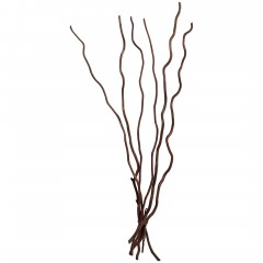 Kuwastaebe-Trockenblume-Braun-Dunkelbraun-80cm-pla1