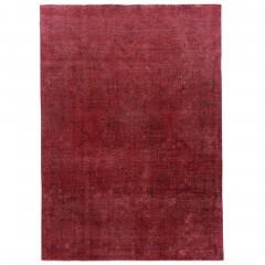 PersianFullcolor-rot_900269172-079