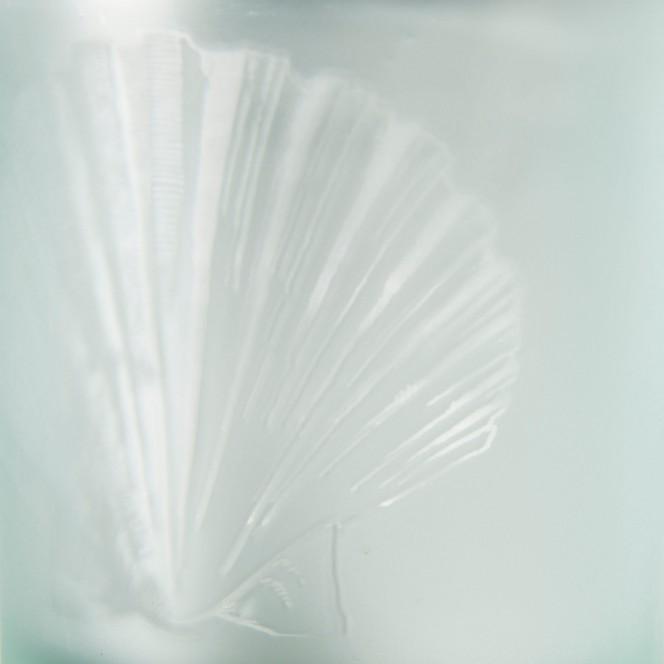 Muschelglas-Teelichthalter-Gruen-7x8-lup2
