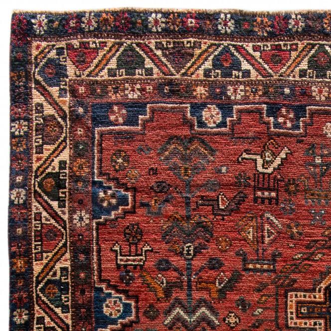 Shiraz-rot_900250868-066_lup1