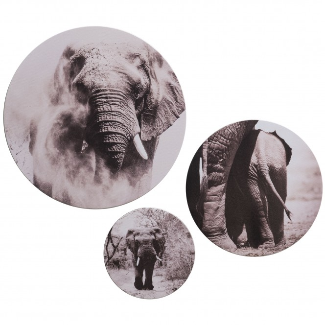 Canvas3er-Bild-Afrika-grau-Multicolor-3erSet-pla